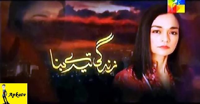 Zindagi-Tere-Bina-Hum-TV-Drama