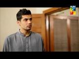 Shareek e Hayaat – Episode 7 – Hum TV Drama