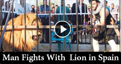 Man fights lion in Spain