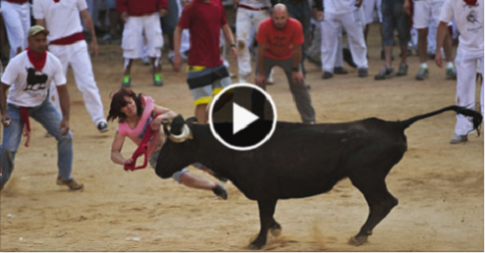 bull fight