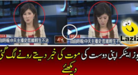 news-anchor