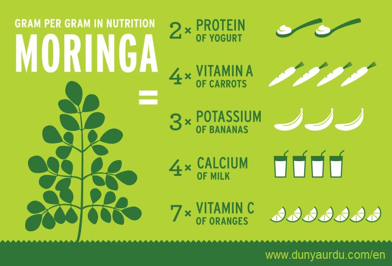 moringa-nutrition-infographic